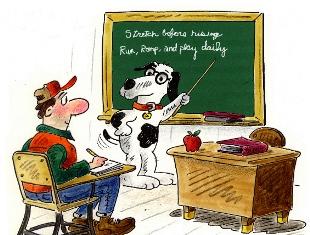 Dog-Teacher