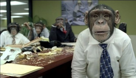 monkey politician