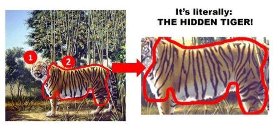 tiger.2